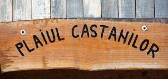 Pensiunea Plaiul Castanilor