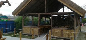 Casa Alb-Albastra