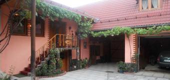 Casa de vacanță Vidrighin
